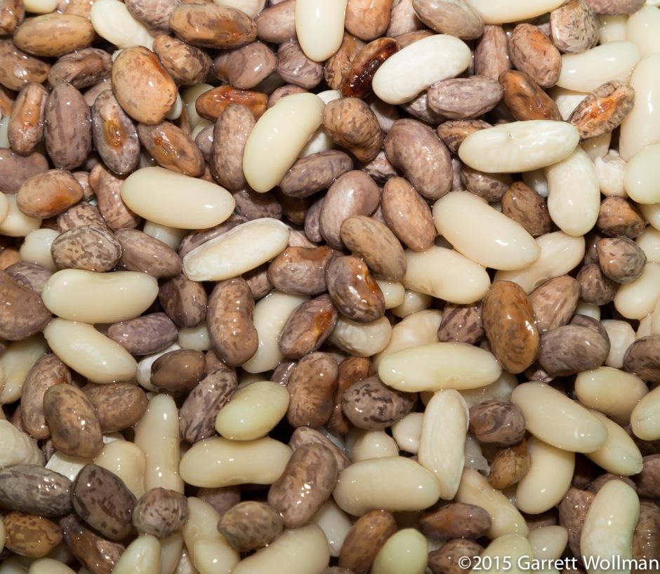 Beans after an hour speed-brine