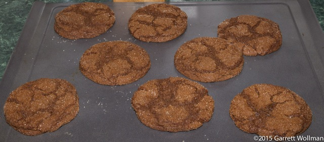 Cookies hot from the oven