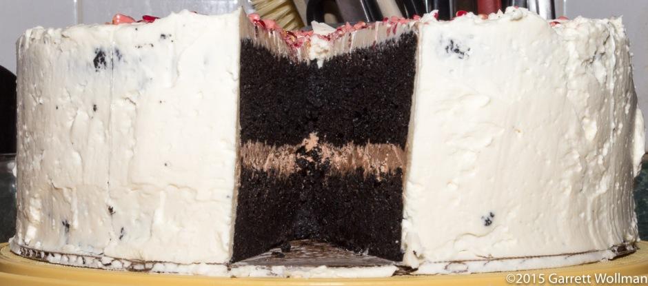 Cake minus one slice, edge on view